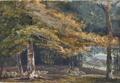 Forest Scene | Paul Sandby