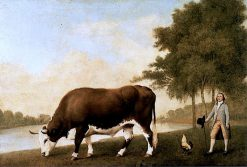 The Lincolnshire Ox | George Stubbs | Oil Painting