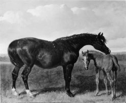 Mare with Foal | John Frederick Herring