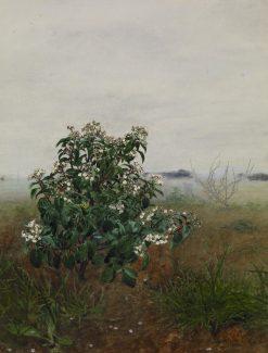The Flowering Shrub | LEon Bonvin | Oil Painting