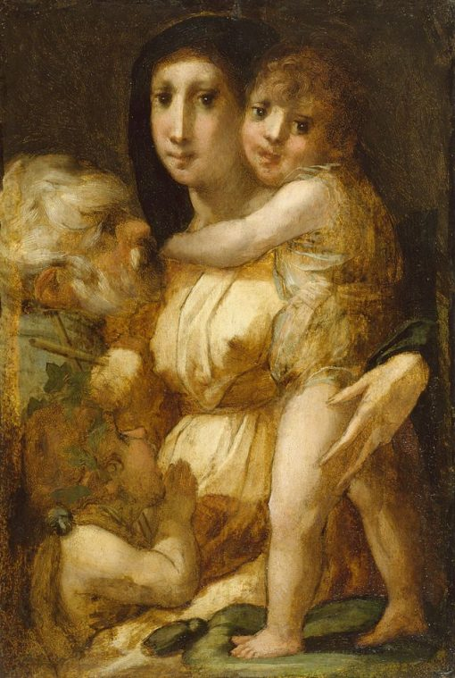 Holy Family with the Infant Saint John the Baptist | Rosso Fiorentino | Oil Painting