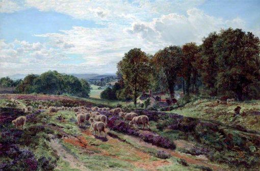 Albury Heath