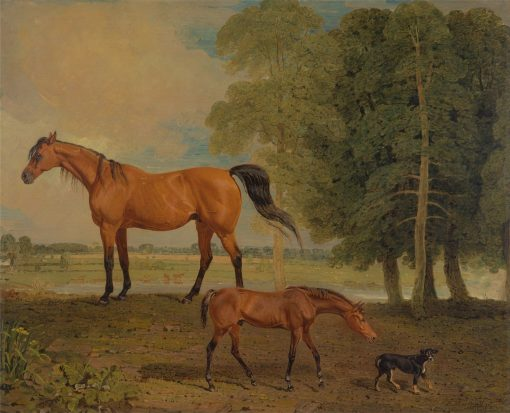 Broodmare with Foal