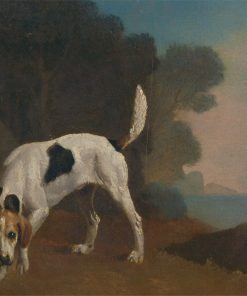 Foxhound | George Stubbs | Oil Painting