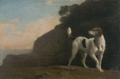 A Foxhound | George Stubbs | Oil Painting