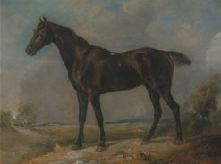 Golding Constable's Black Riding Horse | John Constable | Oil Painting