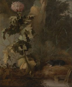 An Egyptian Poppy and a Water Mole | John Crome | Oil Painting