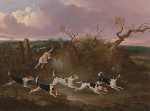 Beagles in Full Cry | John Dalby | Oil Painting