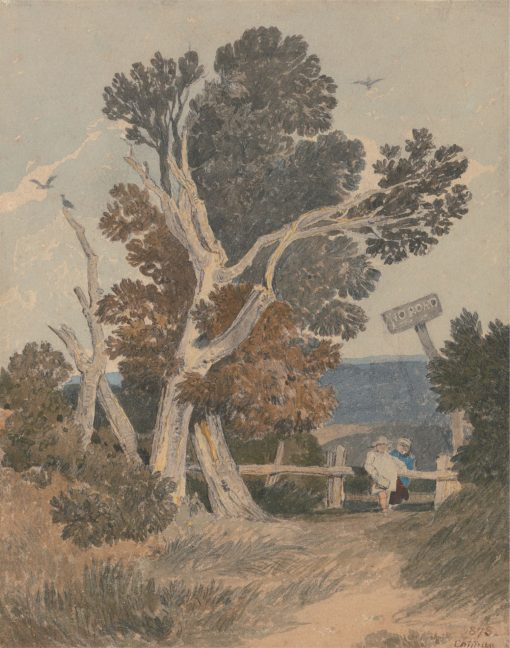 A Group of Trees by a Fence | John Sell Cotman | Oil Painting