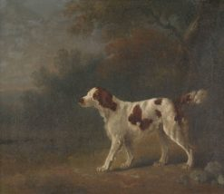 A Setter at the Edge of a Wood | Sawrey Gilpin | Oil Painting
