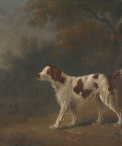 A Setter at the Edge of a Wood   Sawrey Gilpin   Oil Painting