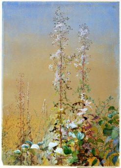 Untitled | Fidelia Bridges | Oil Painting