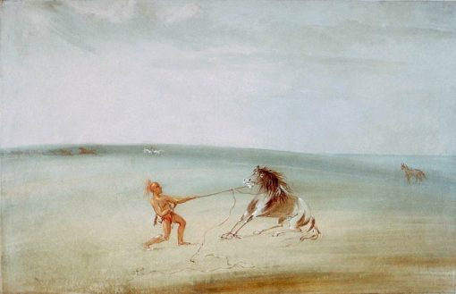Breaking Down the Wild Horse | George Catlin | Oil Painting