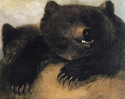 Weapons and Physiognomy of the Grizzly Bear | George Catlin | Oil Painting