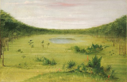 Beautiful Savannah in the Pine Woods of Florida | George Catlin | Oil Painting