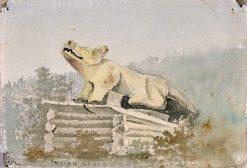 Indian Grave. Wolf Totem over Medicine Man Grave