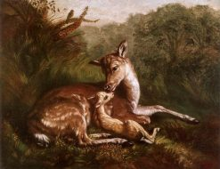 Deer and Fawn | Arthur Fitzwilliam Tait | Oil Painting