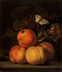 Still Life with Peaches | Abraham van Calraet | Oil Painting