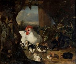 Hen with her chicks | Adriaen Coorte | Oil Painting