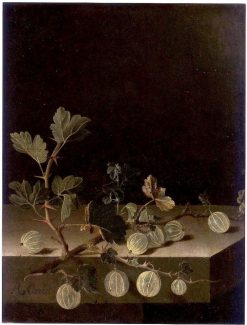 Still Life with a Spray of Gooseberries | Adriaen Coorte | Oil Painting