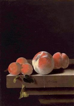 Peaches and Apricots on a Stone Ledge | Adriaen Coorte | Oil Painting