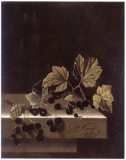 Black Currants   Adriaen Coorte   Oil Painting