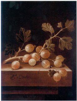 Gooseberries   Adriaen Coorte   Oil Painting
