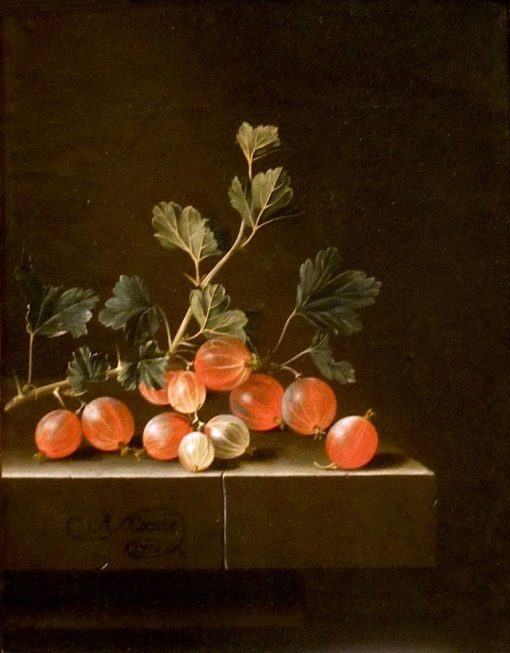 Gooseberries on a Table | Adriaen Coorte | Oil Painting