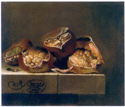 Chestnuts   Adriaen Coorte   Oil Painting