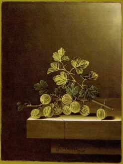 Spray of Green Gooseberries on a Stone Plinth | Adriaen Coorte | Oil Painting
