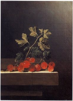Spray of Red Gooseberries on a Stone Plinth | Adriaen Coorte | Oil Painting