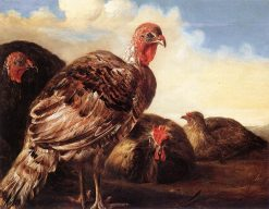 Poultry | Aelbert Cuyp | Oil Painting