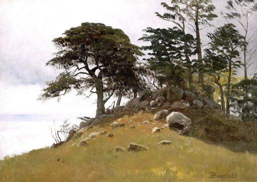 Cypress Point