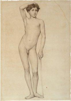 Nude Male Model (academy study) | Albert Edelfelt | Oil Painting