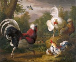 Cock Fight | Jakob Bogdány | Oil Painting