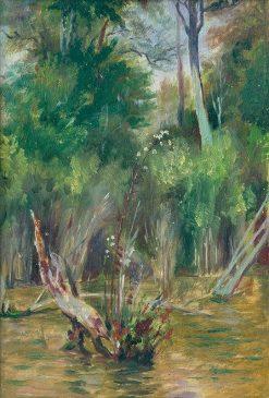 Lesné jazierko | Dezider Czölder | Oil Painting