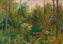 Vnútro lesa | Dezider Czölder | Oil Painting