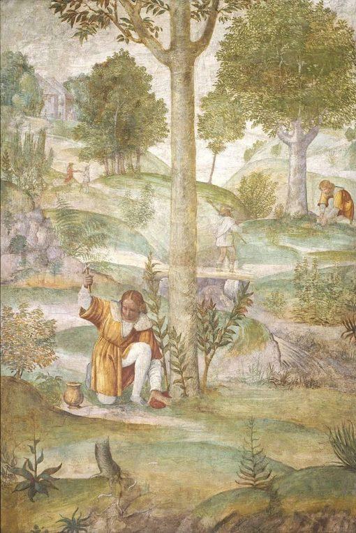 Cephalus Hiding the Jewels   Bernardino Luini   Oil Painting