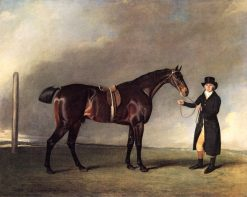 """Mr. Josep Cookson's Brown Colt """"Sir Harry"""" by Sir Peter Teacle out of Marton"""