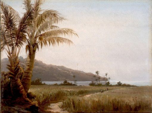 Coconut Palms by the Sea | Camille Pissarro | Oil Painting
