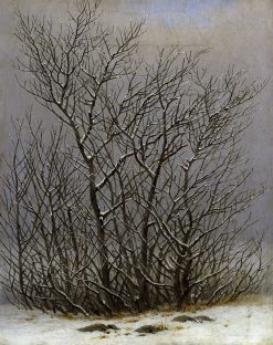 Trees and Shrubs under the Snow | Caspar David Friedrich | Oil Painting
