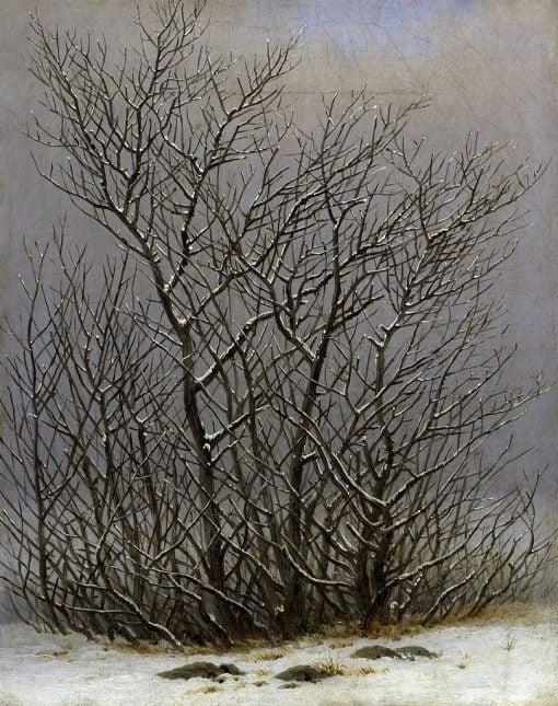 Trees and Shrubs under the Snow | Caspar David Friedrich | Oil Painting