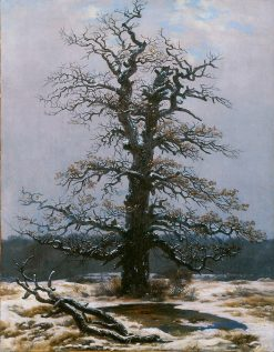 Oak in the Snow | Caspar David Friedrich | Oil Painting