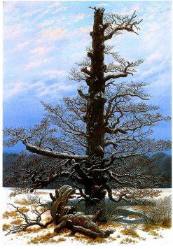Oaktree in the Snow | Caspar David Friedrich | Oil Painting