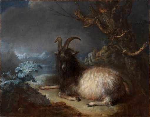 Goat in a Landscape   Gerrit Dou   Oil Painting