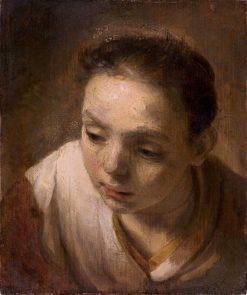 Head of a Girl | Rembrandt van Rijn | Oil Painting