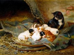 Nap Time | William Henry Hamilton Trood | Oil Painting