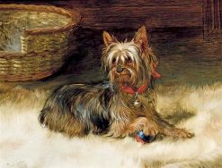 Ready to Play | William Henry Hamilton Trood | Oil Painting