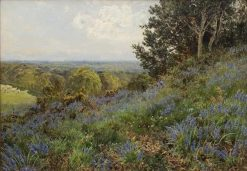 Surry Bluebells | John Clayton Adams | Oil Painting