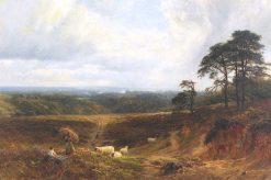 A Surrey Landscape | George Vicat Cole | Oil Painting